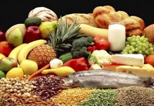 fit met voeding